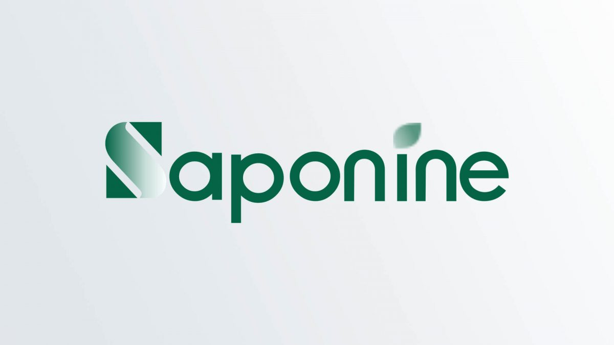 Saponin Products